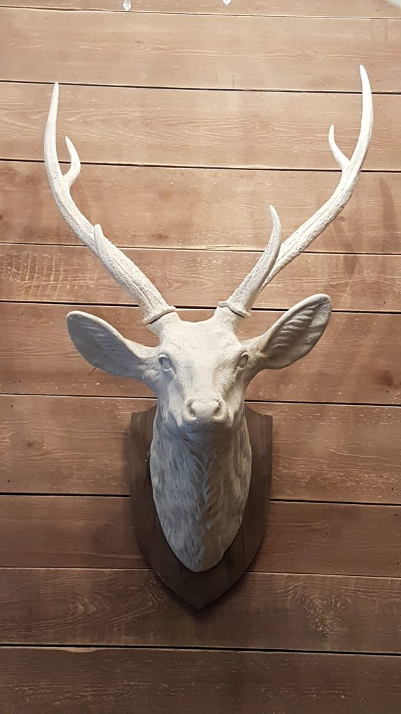 life-size white stag head to hire for weddings and parties